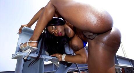 Black Ass Porn